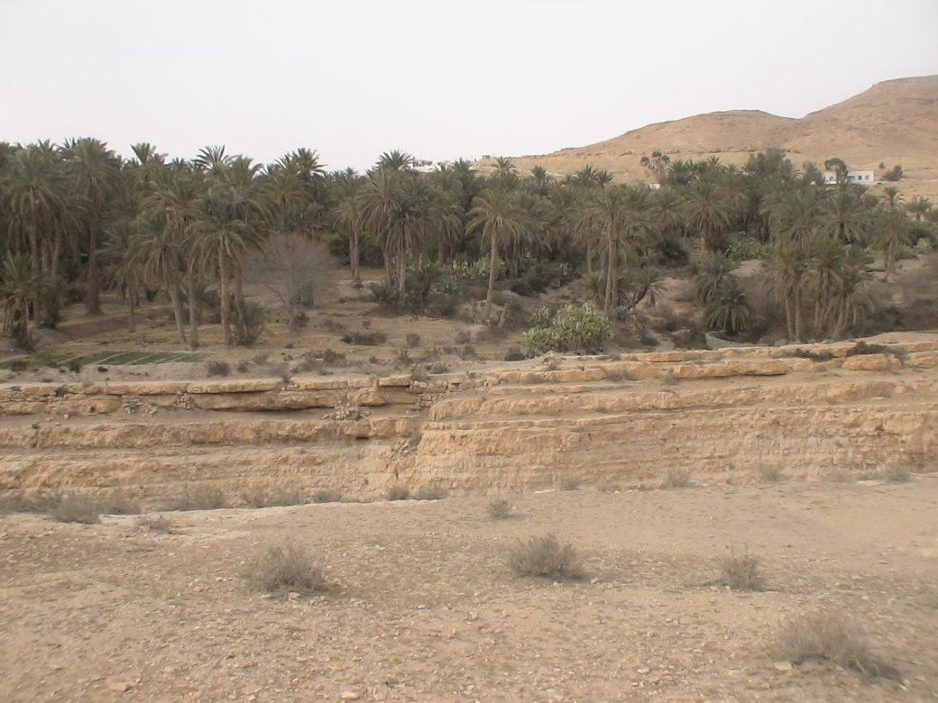Oaza Mides w Tunezji